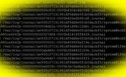 Elencare i file e le directory più grandi in Linux