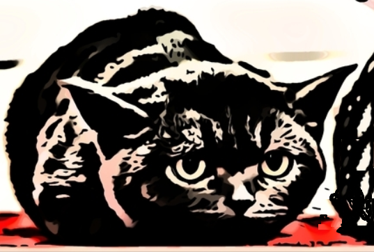 Installare Tomcat su CentOS 8